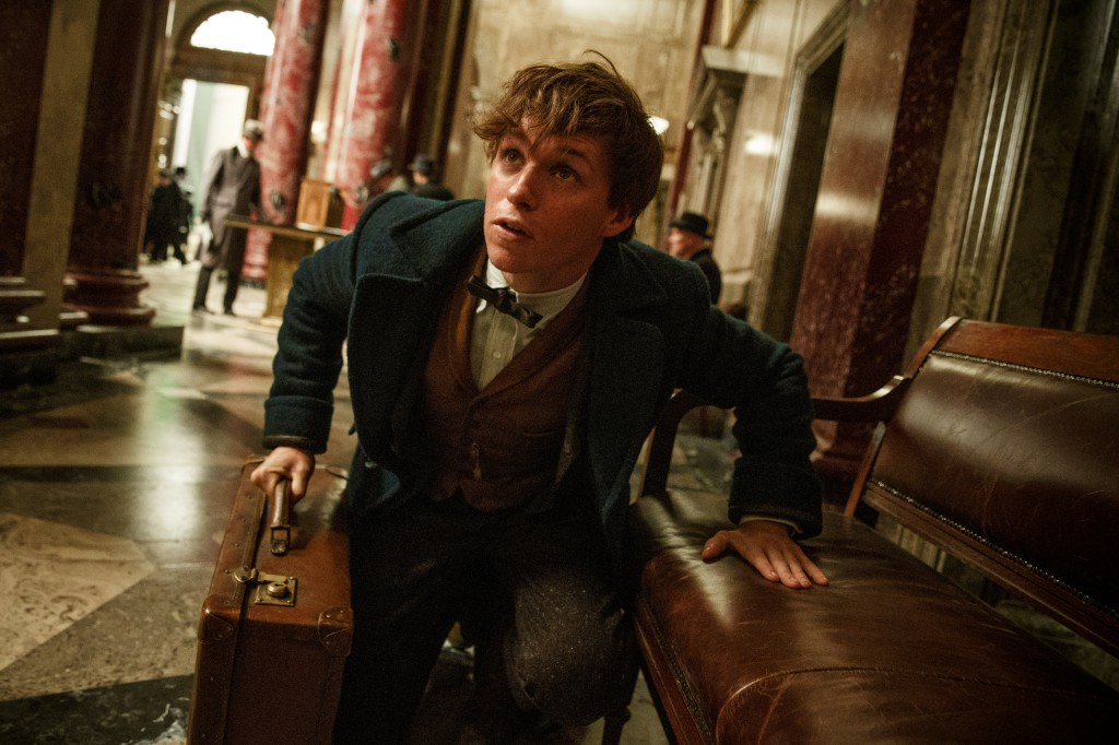 %e6%a0%bc%e5%bc%8f%e5%b7%a5%e5%bb%a0fantastic-beasts-and-where-to-find-them-eddie-redmayne1