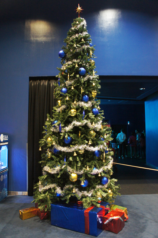 christmas-tree-sea-aquarium