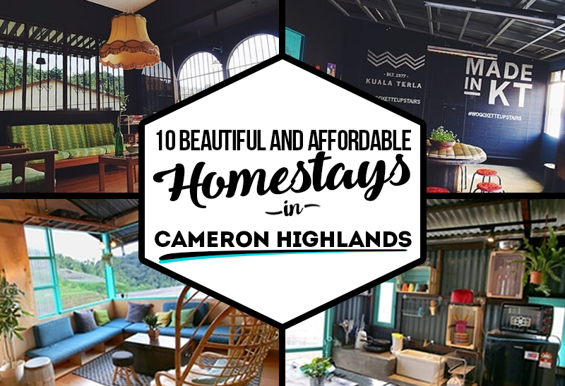 10 Beautiful and Affordable Homestays in Cameron Highlands ...