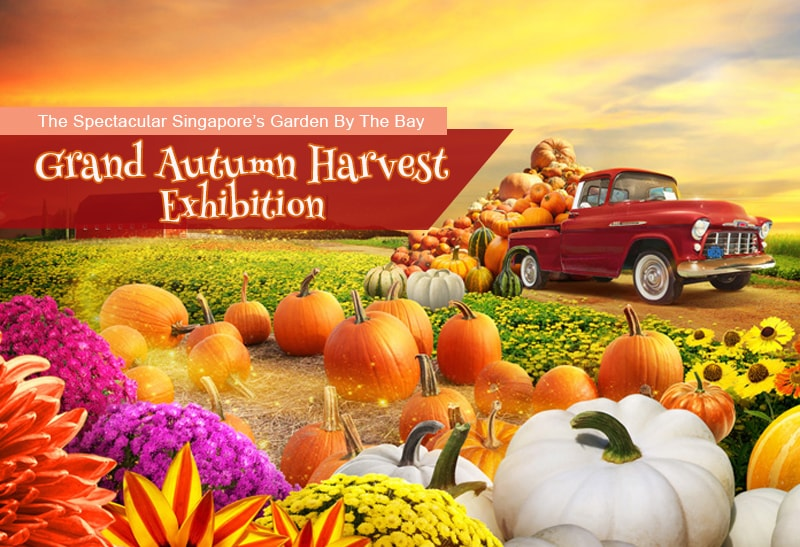 the spectacular singapores garden by the bay grand autumn harvest exhibition